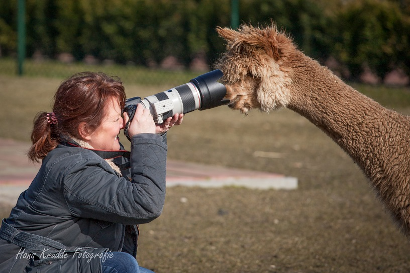 Workshop dierenfotografie