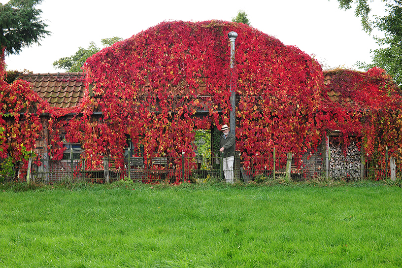 Tuin Potten Groothandel : Herfstige hitte in loenense tuin landleven
