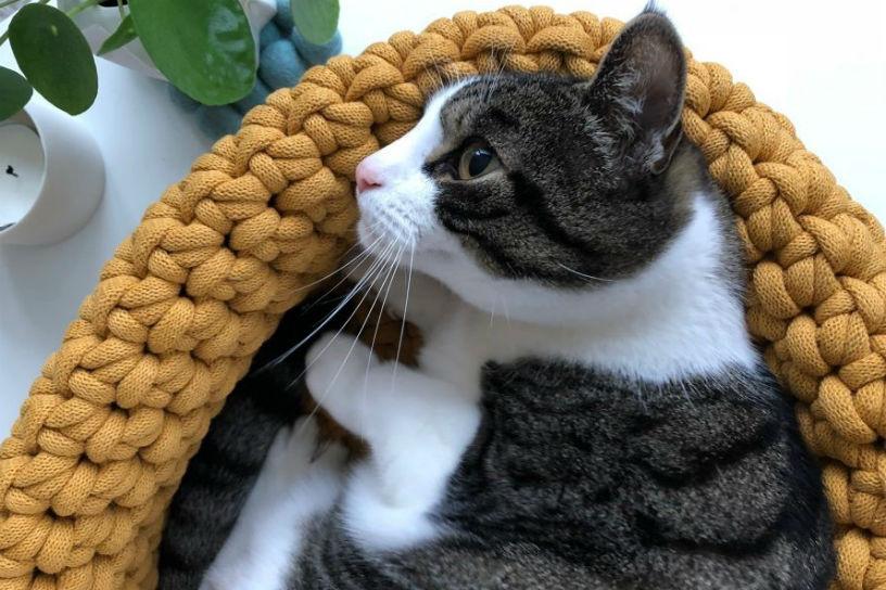 Maak Zelf Een Kattenmand Van Dik Garen Landleven